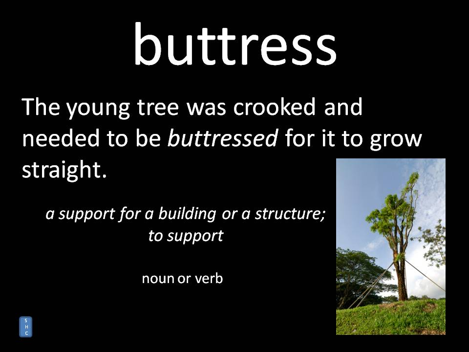 buttress - meaning