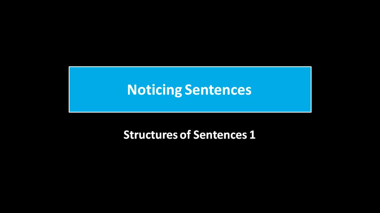 Noticing Sentences